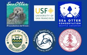 2020 sea otter grant awards